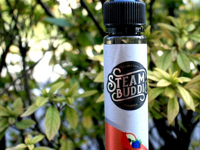Steam Buddies(スチームバディーズ) Toby Straw(トビーストロー)50ml