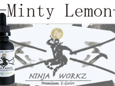 NINJA WORKZ Minty Lemon 30ml